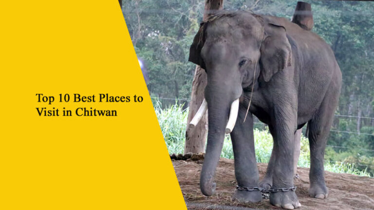 Top 10 Best Places to Visit in Chitwan, Nepal