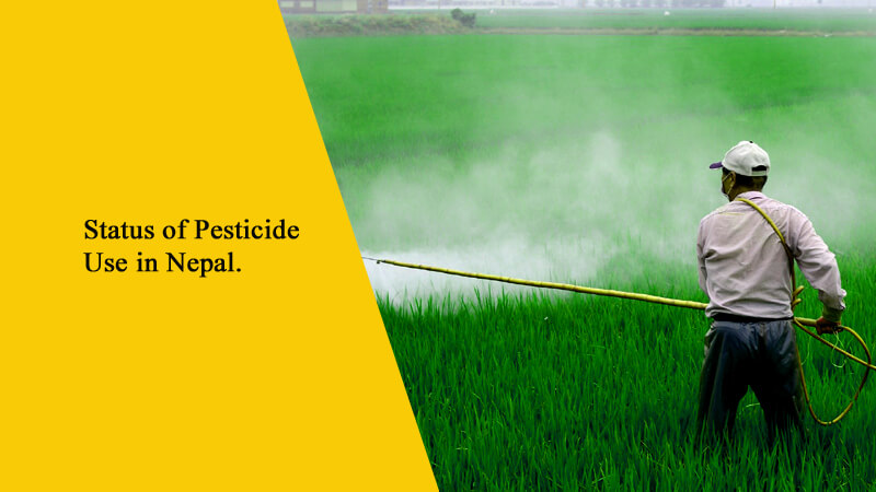 Status of Pesticide Use in Nepal