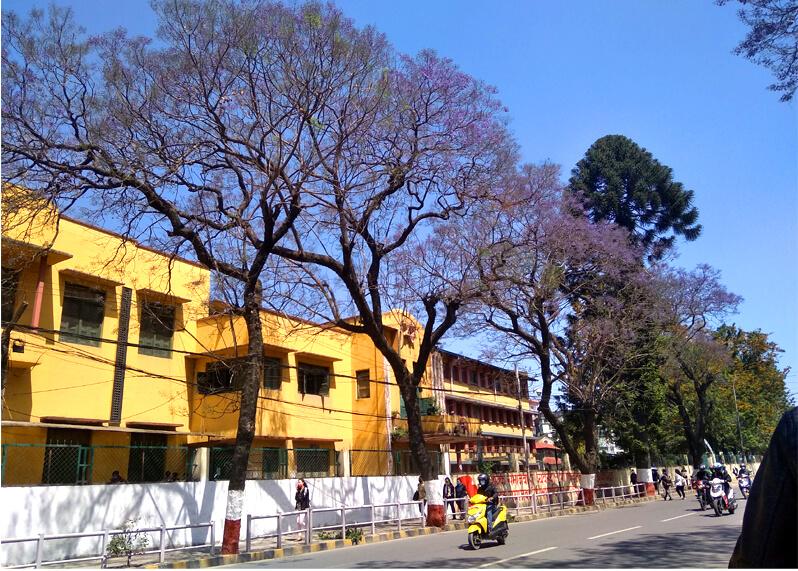 Tri-Chandra College