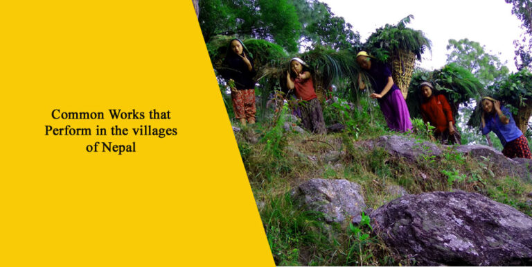 Top 10 Common Village Works in Nepal